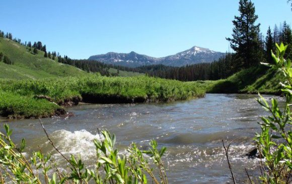 Guest opinion: Wilderness generates business for Montana